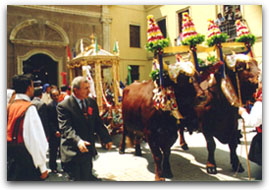 Images of the festival of Sant' Efisio